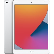 Apple iPad Wi-Fi + 4G,128GB Silber